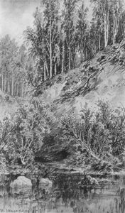 Ivan Ivanovich Shishkin - Bank of the stream