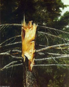 Jamie Wyeth - Torn Spruce