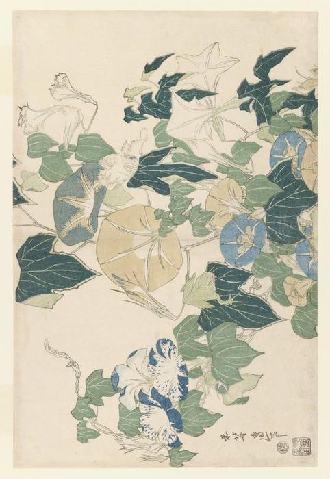 Morning Glories in Flowers and Buds, 1832 by Katsushika Hokusai (1760-1849, Japan)