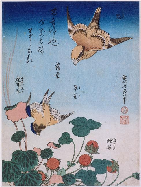 Swallow and begonia and strawberry pie, 1834 by Katsushika Hokusai (1760-1849, Japan)