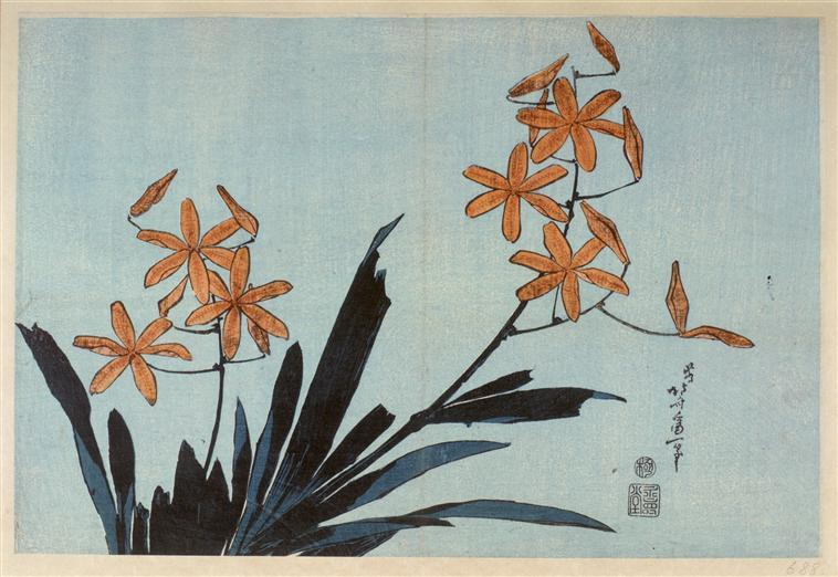 Orange orchids by Katsushika Hokusai (1760-1849, Japan) | Famous Paintings Reproductions | WahooArt.com