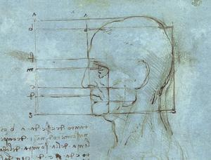 Leonardo Da Vinci - The proportions of the head