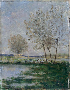 Maxime Emile Louis Maufra - Flooded meadows
