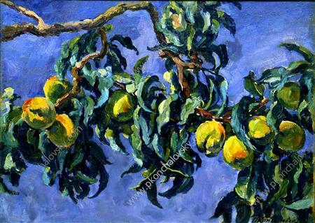 Peaches on the branches, 1930 by Pyotr Konchalovsky (1876-1956, Russia)
