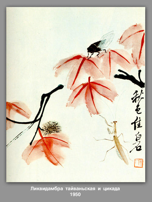 Likvidambra Taiwan and the cicada , 1950 by Qi Baishi (1864-1957, China)