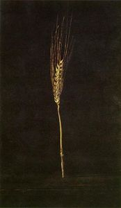 Salvador Dali - Wheat Ear