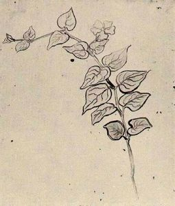 Vincent Van Gogh - Branch with Leaves