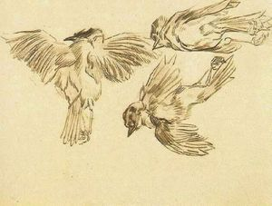 Vincent Van Gogh - Studies of a Dead Sparrow