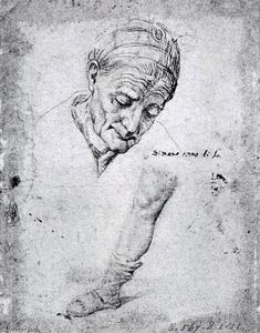 Antonio Campi - Studies of an Old Woman's Face and a Leg