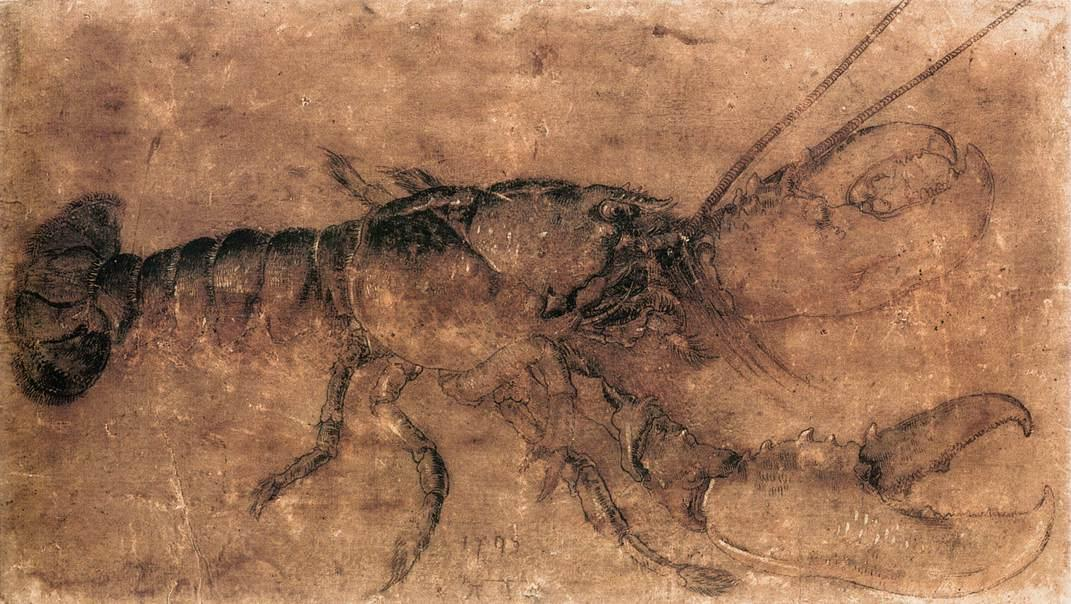 Lobster, 1495 by Albrecht Durer (1471-1528, Italy) | Famous Paintings Reproductions | WahooArt.com