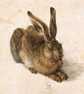 Albrecht Durer - Young Hare - (Famous paintings)