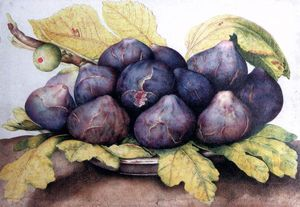 Giovanna Garzoni - Plate of Figs