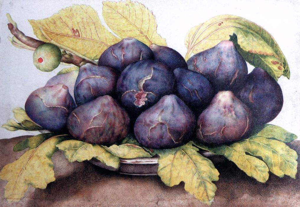 Plate of Figs, 1661 by Giovanna Garzoni (1600-1670, Italy) | Paintings Reproductions Giovanna Garzoni | WahooArt.com