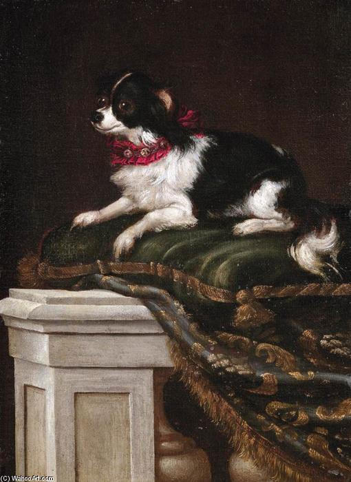 A Spaniel on a Cushion by Francesco Fieravino (Il Maltese) (1610-1670, Italy) | Museum Quality Reproductions | WahooArt.com