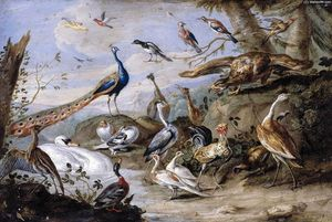 Jan Van Kessel - Birds on a Riverbank