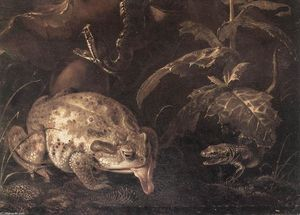 Otto Marseus Van Schrieck - Still-Life with Insects and Amphibians (detail)