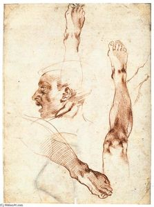 Michelangelo Buonarroti - Male Head in Profile and Leg Studies (recto)