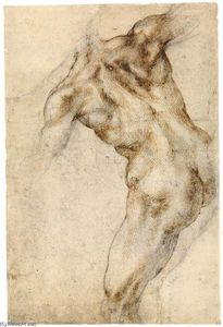 Michelangelo Buonarroti - Male Nude, Seen from the Rear (recto)
