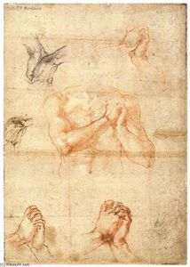 Michelangelo Buonarroti - Male Upper Body with Folded Hands (verso)