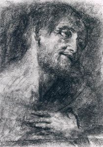 Giovanni Girolamo Savoldo - Head of a Bearded Man