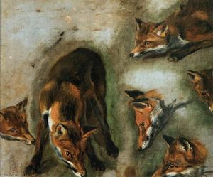 Boel Pieter (Boule) - Studies of a Fox