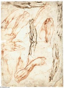 Michelangelo Buonarroti - Studies of Arms and Hands (recto)