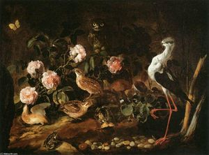 Paolo Porpora - Still-Life with an Owl and an Ibis