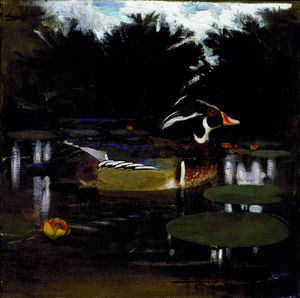Abbott Handerson Thayer - Male Wood Duck in a Forest Pool