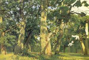 Ivan Ivanovich Shishkin - Oaks, evening (study for picture Oak-wood)