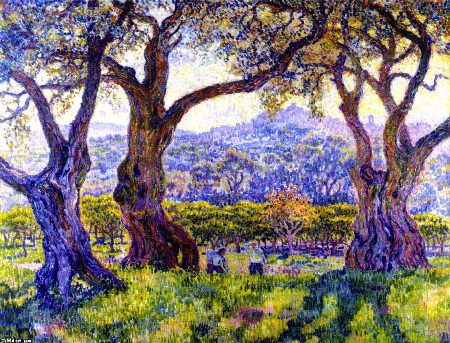 Olive Trees near Nice (also known as Oliviers aux environs de Nice), 1905 by Theo Van Rysselberghe (1862-1926, Belgium) | WahooArt.com