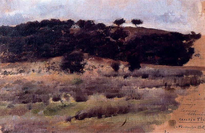Paisaje, Oil On Canvas by Cecilio Pla Y Gallardo (1860-1934, Spain)