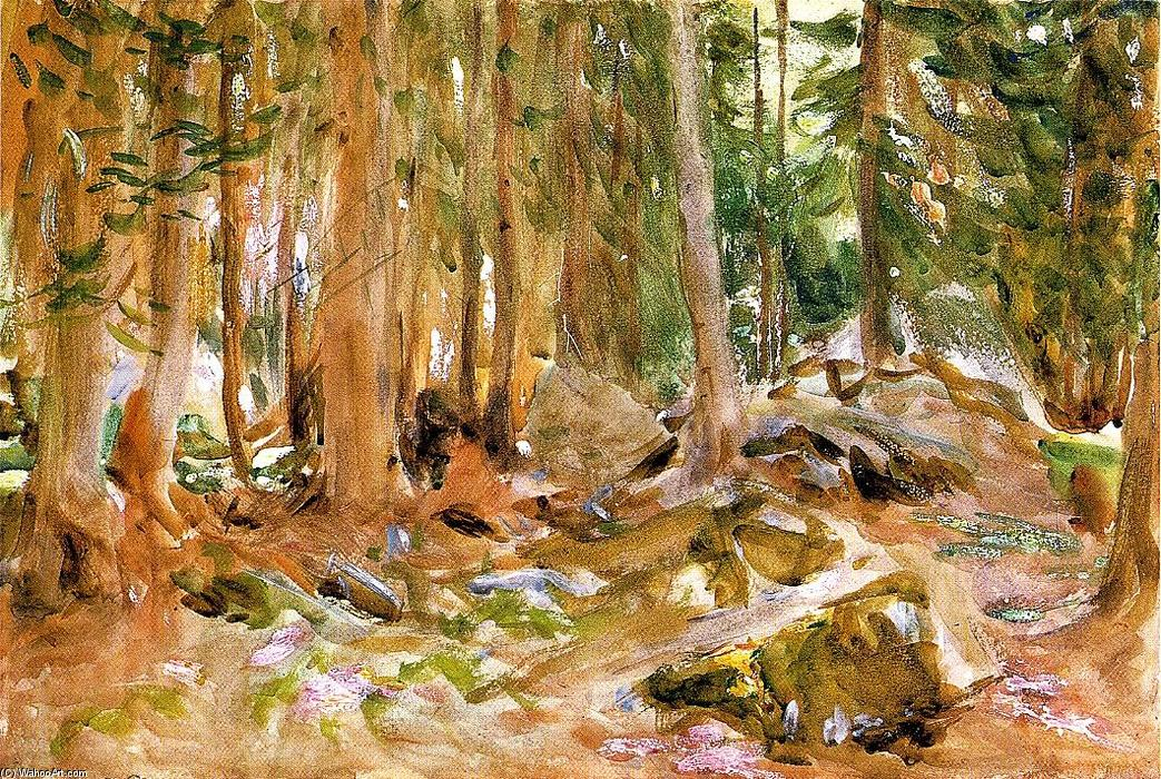 Pine Forest, Watercolour by John Singer Sargent (1856-1925, Italy)