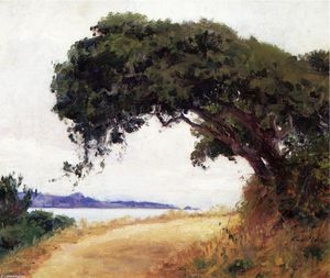 Guy Orlando Rose - Point Lobos, Oak Tree