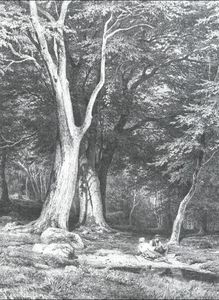 Ivan Ivanovich Shishkin - Rest in a forest