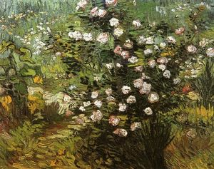 Vincent Van Gogh - Rosebush i Blossom - (oil painting reproductions)