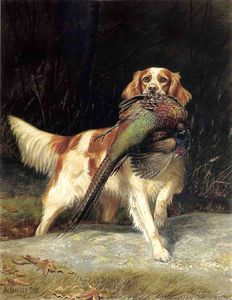 Alexander Pope - Springer Spaniel with Pheasant