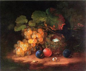 George Forster - Still Life with Fruit, Bird's Nest and Broken Egg