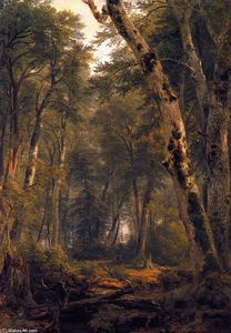 Asher Brown Durand - Study: Woodland Interior
