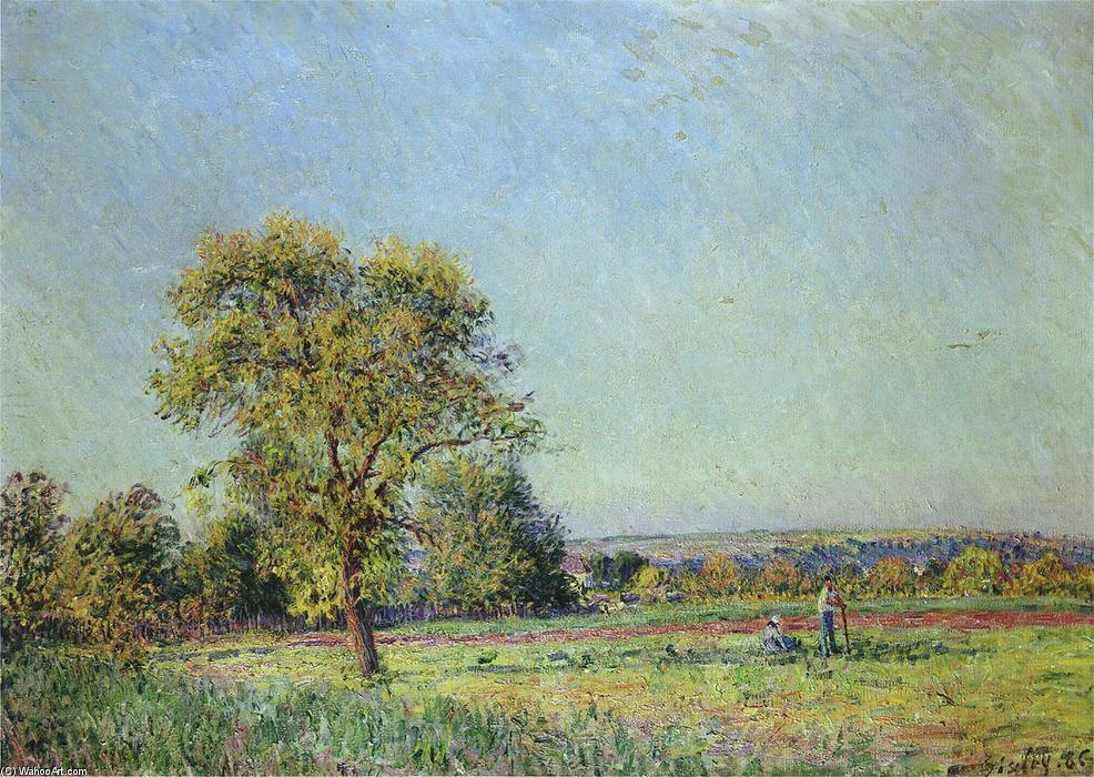 A Summer's Day, Oil On Canvas by Alfred Sisley (1839-1899, France)