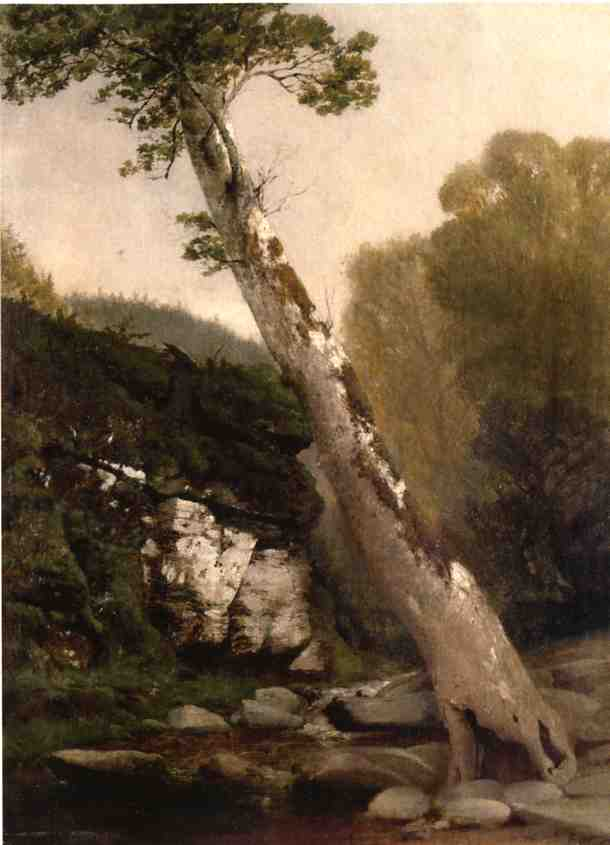 Sycamore, Catskill Clove, Below Haines Falls, Oil On Canvas by John Williamson (1945-1885, United States)