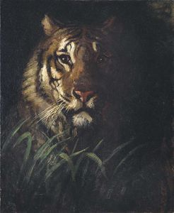 Buy Museum Art Reproductions | Tiger`s Head, 1874 by Abbott Handerson Thayer (1849-1921, United States) | WahooArt.com