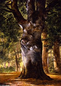 Alexandre Calame - Trunk of a Beech Tree