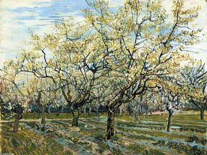 Vincent Van Gogh - The White Orchard