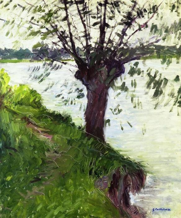 Willow on the Banks of the Seine by Gustave Caillebotte (1848-1894, France)