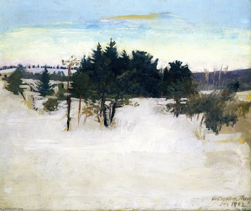 Winter Landscape, 1902 by Abbott Handerson Thayer (1849-1921, United States) | Painting Copy | WahooArt.com