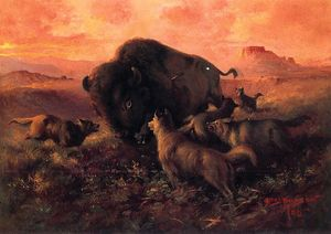 Frank Tenney Johnson - The Wounded Buffalo