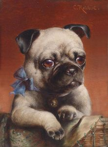 Carl Reichert - Young Pug