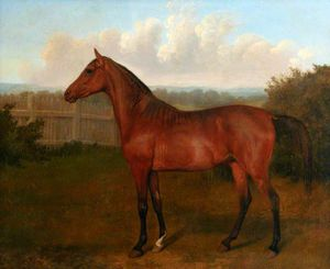 Jacques Laurent Agasse - Colt Of Mare And Arab Horse