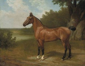 Jacques Laurent Agasse - Lord Bingley-s Hunter In A Wooded River Landscape