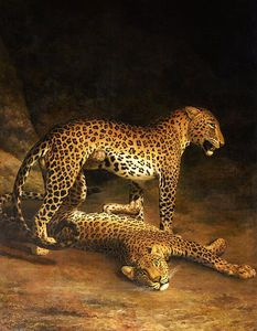 Jacques Laurent Agasse - Two Leopards Lying In The Exeter